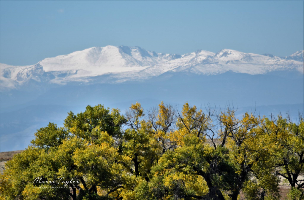Colorado mountains from the Rocky Mountain Arsenal and Wildlife Refuge